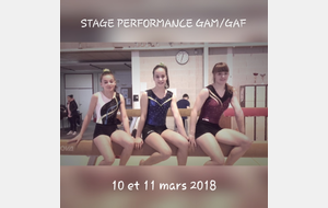 Stage région